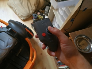 holding remote control for Wild Thing